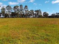 Picture of Lot 16 Norna Drive, Northcliffe