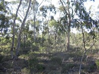 Picture of Section 132 Burts Road, Western Flat