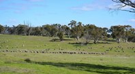 Picture of 3584 Kings Highway Subdivision, Bungendore