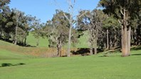 Picture of Lot 1030 Goldfields Road, Upper Capel