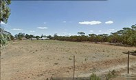 Picture of Pinnaroo