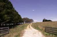 Picture of Grabben Gullen Road, Crookwell