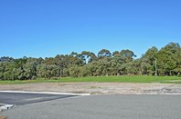 Picture of Lot 127 Friesian Way, Milpara