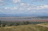 Picture of Quirindi