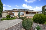 Picture of 443 Grenfell Road, Banksia Park