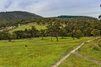 Picture of Lot 7/533 Sugarloaf Road, Carlton River