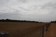 Picture of Lot 3 Homebush Road, Yarloop