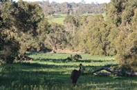 Picture of Lot 6 Morley Road, Lower Chittering