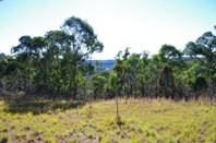 Picture of Blaxlands Ridge