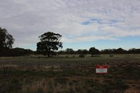 Picture of Lot 125 Parkes Street, Burracoppin