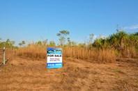 Picture of 335 Darwin River Road, Darwin River