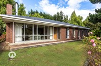 Picture of 181 Arve Road, Geeveston