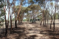 Picture of 232 Dowerin-Meckering Road, Meckering