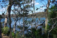 Picture of Lot 1 Old South Coast Rd, Narooma