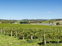 Picture of 345 Jacksons Hill Road, Gumeracha