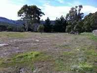 Picture of 2042 East Tamar Highway, Dilston