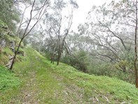 Picture of Lot 96 Norton Summit Road, Teringie