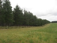 Picture of 4-5 West Avenue Range Road, Lucindale
