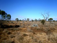 Picture of Lot 20 Mackay Road, Blanchetown