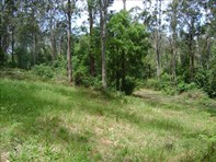 Picture of Lot 3/361-381 The Scenic Rd, Macmasters Beach