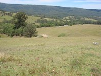 Picture of 1524 Chichester Dam Road, Dungog