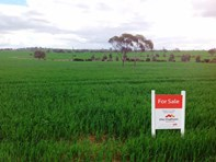 Picture of Lot 1 NORTHAM-PITHARA ROAD, Goomalling