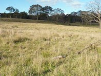 Picture of 563 Mt Baw Baw road, Goulburn