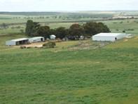 Picture of Cantabilling, Badgingarra