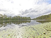 Picture of 337 Mount Cotton Road, Capalaba