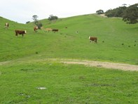 Picture of Lot 1 Kemmiss Hill Road, Myponga