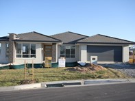 Picture of Lot 236 Tallwoods Circuit, Yarrabilba