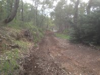 Picture of 300 Mundaring Weir Road, Bickley