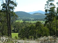 Picture of Lot 1 247 Lower Swamp Road, Lachlan