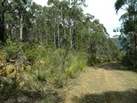 Picture of Jeffreys Track, Lachlan