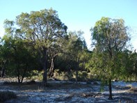 Picture of Lot 17 Irvine Road, Metricup