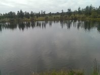 Picture of 216 Sabina Road, Tutunup