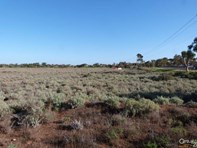 Picture of Allotment 51 Stuart Highway, Port Augusta West