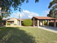 Picture of 19 Woolerong Walk, Marangaroo