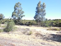 Picture of 204 Olive Grove, Karakin