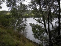 Picture of 00 Wallagaraugh Road, Orbost
