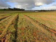Picture of Lot 10 / Moppa Road, Moppa