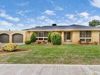 Picture of 11 Olympus Avenue, Modbury Heights