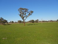 Picture of 3080 Naracoorte Road, Western Flat