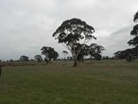 Picture of 536 My Mi Mi Road, Western Flat