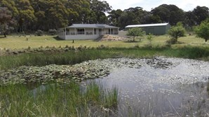 Main photo of 896 Barry Road, Hanging Rock - More Details