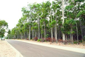 Main photo of 10 (Proposed Lot) Goodenia Street, Margaret River - More Details