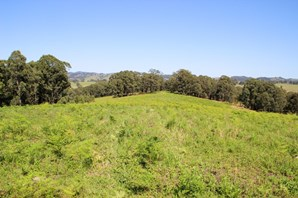 Picture of Lot 105 & 107 Nelsons Road, Dungog