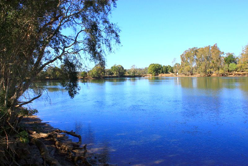 Picture of 313 South Arm Road, Urunga