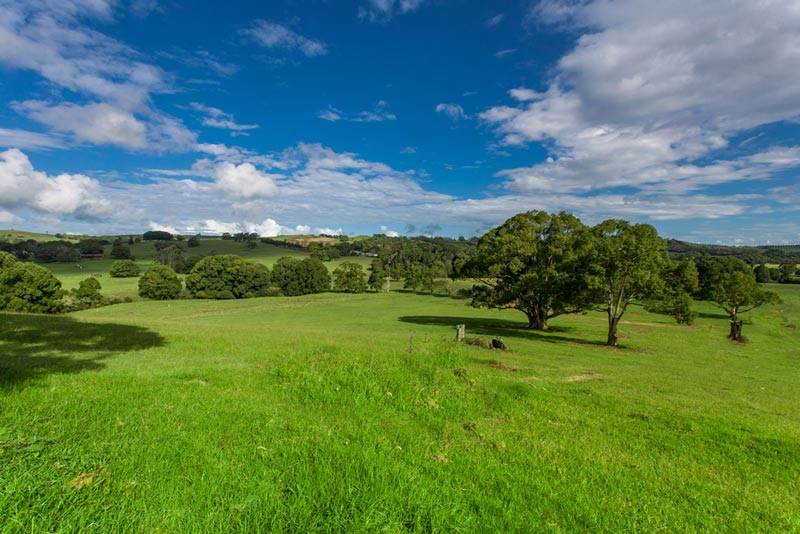 """Picture of """"The Meadows"""" Off Charlotte Street, Bangalow"""
