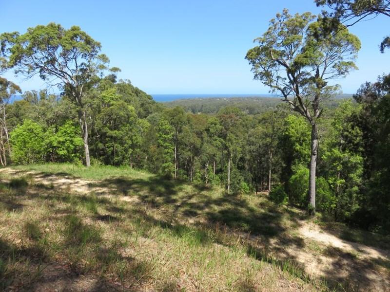 Photo of Lot 702 Bowerbird Lane Valla, NSW 2448